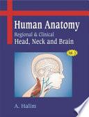 Human Anatomy:Volume Iii: Head, Neck And Brain