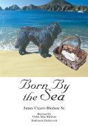 Born by the Sea Pdf