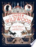 Under Wildwood image