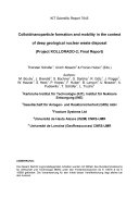 Colloid/nanoparticle formation and mobility in the context of deep geological nuclear waste disposal (Project KOLLORADO-2) ; final report