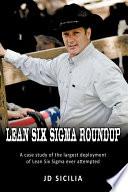 Lean Six Sigma Roundup