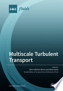 Multiscale Turbulent Transport