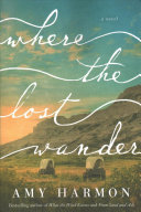 Where the Lost Wander image