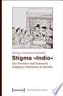 Stigma »Indio«  : Zur Struktur und Semantik Indigener Exklusion in Mexiko