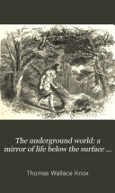 The Underground World: a Mirror of Life Below the Surface ...