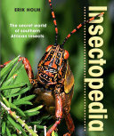 Insectopedia     The secret world of southern African insects