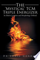 The Mystical TCM Triple Energizer  : Its Elusive Location and Morphology Defined