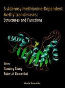 S-adenosylmethionine-dependent Methyltransferases