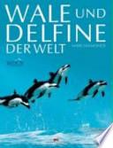 Wale und Delfine der Welt