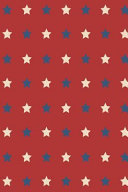 Patriotic Pattern   United States Of America 37