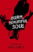 Burn  Beautiful Soul Book