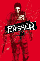 The Punisher Volume 2