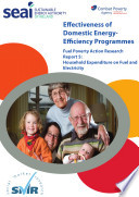 Effectiveness Of Domestic Energy Programmes Household Expenditure On Fuel And Electricity