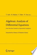 Algebraic Analysis of Differential Equations