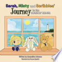 Sarah  Misty and Scribbles  journey to the house by the sea Book