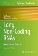 Long Non Coding RNAs