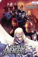 Secret Avengers Volume 1