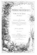 The Fern Paradise