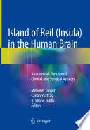Island of Reil  Insula  in the Human Brain