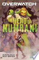 The Hero of Numbani  Overwatch  1