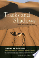 Tracks and Shadows