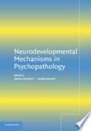 Neurodevelopmental Mechanisms In Psychopathology Book PDF