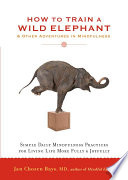 """How to Train a Wild Elephant: And Other Adventures in Mindfulness"" by Jan Chozen Bays"