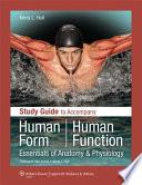 Human Form, Human Function