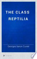 The Class Reptilia