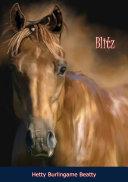 Blitz Book