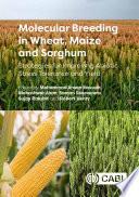 Molecular Breeding in Wheat  Maize and Sorghum Book