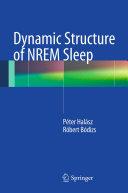 Dynamic Structure of NREM Sleep