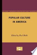 Popular Culture in America