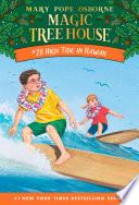 High Tide in Hawaii