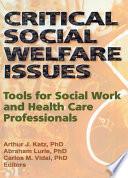 Critical Social Welfare Issues Book
