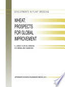 Wheat  Prospects for Global Improvement