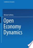 Open Economy Dynamics
