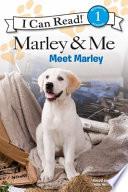 Marley & Me: Meet Marley