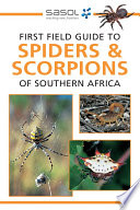 First Field Guide To Spiders Scorpions Of Southern Africa Book