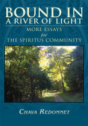 Bound in a River of Light ebook