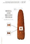 Cornell Corn Breeding Program