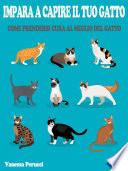 Impara a capire il tuo Gatto