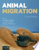 Animal Migration Book