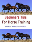Beginners Tips for Horse Training  What Every Horse Trainer Should Know