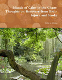 Pdf Islands of Calm in the Chaos: Thoughts on Recovery from Brain Injury and Stroke