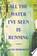 All the Water I ve Seen Is Running  A Novel