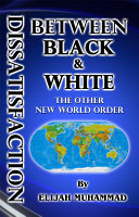 Dissatisfaction Between Black and White (the Other New World Order) ebook