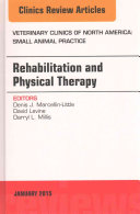 Rehabilitation And Physical Therapy