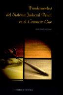 Fundamentos del sistema judicial penal en el Common Law