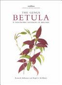 The Genus Betula